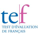TEF - Copie