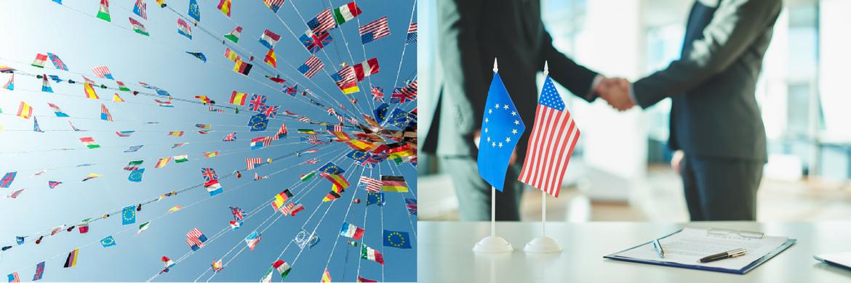 Diplôme de français professionnel Relations internationales